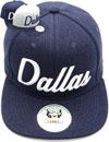 FS-735 Dallas Matte Snapback