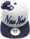 FS-736 New York Matte Snapback