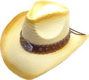 SC-293 Straw Hat