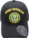 MI-244 Army Veteran