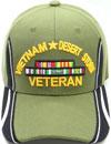 MI-661 Vietnam Desert Storm Veteran