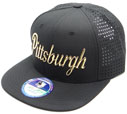 FS-242 Pittsburgh Shiny Frequency Snapback
