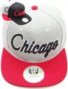 FS-734 Chicago Matte Snapback