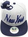 FS-736 New York Matte Snapback